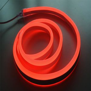 110V 220V 50m/Roll 60LED/M 5050 RGB LED Flex Neon pictures & photos