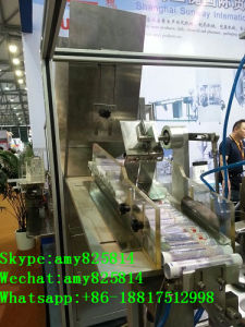 Inner-Heating Filling and Sealing Machine for Cosmetic &Toothpaste (B. GFN-502) pictures & photos