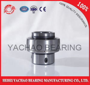 High Quality Good Price Pillow Block Bearing (Uc313 Ucp313 Ucf313 Ucfl313 Uct313)