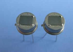 Dual Element Pyroelectric PIR Detector Sensor Lhi968 pictures & photos