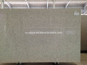 Natural Stone Nenus White Granite for Kitchen Countertop/Vanity Top pictures & photos