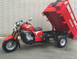 Damping Front Shock Heavy Cargo 150cc-300cc Gas Three Wheel Motorcycle pictures & photos