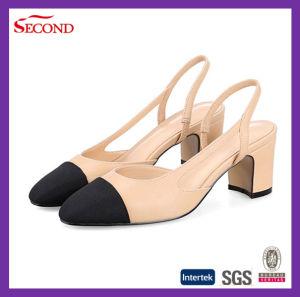 Latest Designs Ladies′s Fashion Sandals