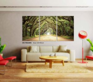 Home Decor Custom Modern 3D Wallpaper for Home Decoration pictures & photos