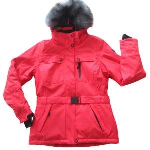 Women′s Water and Wind Proof Sport Outwear (HS16016)