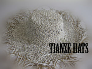 Snow Twist Paper Straw Hat Body pictures & photos