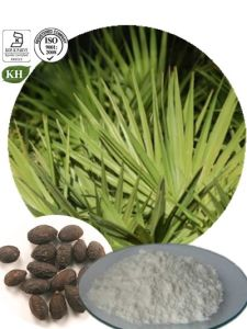 Kingherbs′ 100% Natural Saw Palmetto Extract: Total Fatty Acids 25%-45% pictures & photos