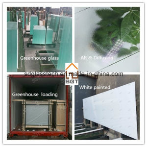 4mm Tempered/Toughened Glass for Greenhouse Project pictures & photos