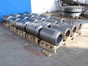 Hot Forged Stainless Steel Nozzle Flange of Material A182 F6nm