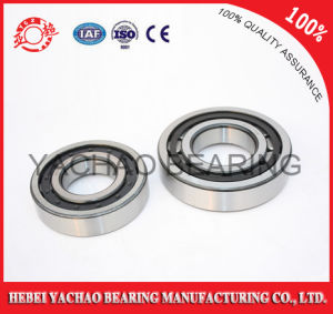 Cylindrical Roller Bearing (N418 Nj418 NF418 Nup418 Nu418) pictures & photos