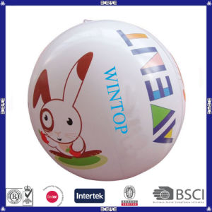 China Made High Quality Beach Ball for Promotion pictures & photos