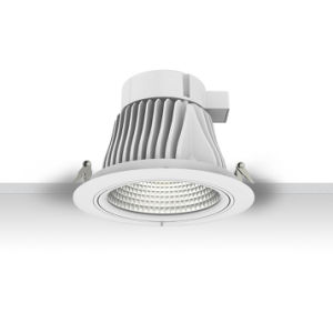 Signcomplex 25W COB Downlight LED with Ce RoHS Dali pictures & photos
