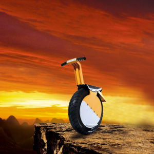 17 Inch One Wheel Electric Motorcycle with Full Aluminium Alloy Frame pictures & photos