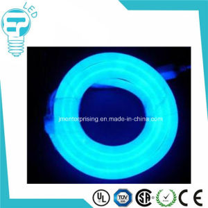 Christmas Wedding Party Decoration Neon Lighting pictures & photos