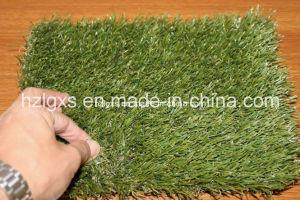 Synthetic Grass for Park / Garden pictures & photos