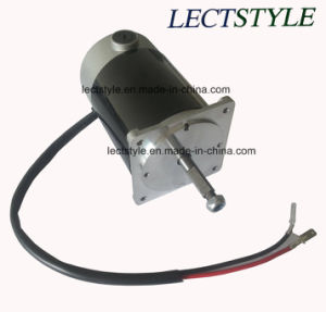 350W 24V 180rpm Dclake Mower Motor pictures & photos