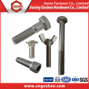 Fastener Standard Stainless Steel Bolt pictures & photos