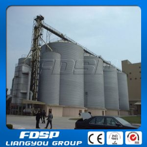 Stainless Steel Silo with Reasonable Price pictures & photos