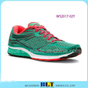 Colourful Sport Running Shoes with Tie pictures & photos