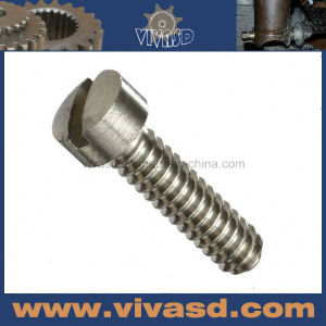 Auto Accessory Motor Parts Accessory Hex Nuts and Bolts pictures & photos