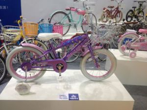 Toys 12 Inch Kids Bike with Assist Wheel (HC-CW-09) pictures & photos