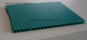 Waterproof Polypropylene Corrugated Sheet PP Flute Board with 6mm pictures & photos