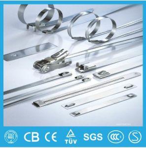 Heavy Duty Metal 304 Stainless Steel Zip Tie Self Locking pictures & photos