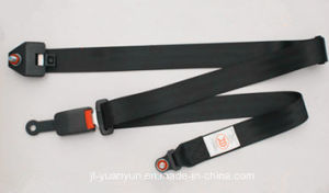 Simple Three-Point Seat Belts with Steel Lock Catch pictures & photos