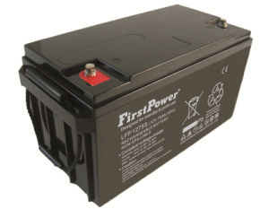 Emergency Power System Battery (LFP1270S) pictures & photos