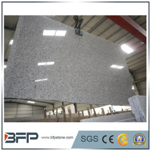 Gangsaw Light Grey Granite Slab for Countertops pictures & photos