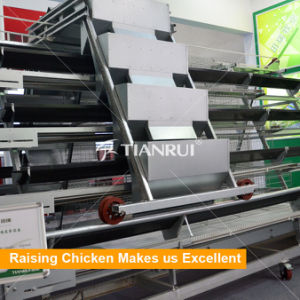 Popular Low Price A Type Poultry Battery Layer Cages pictures & photos