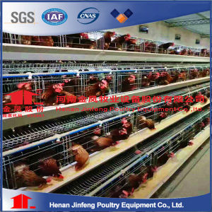 A type 90birds 3 tier chicken use layer cage pictures & photos