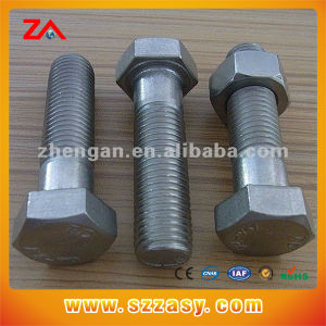 Stainless Steel Hex Screw pictures & photos