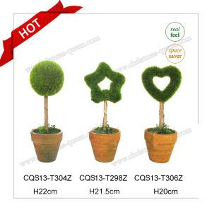 10-18cm Plastic Small Plant Pots Artificial Bonsai pictures & photos