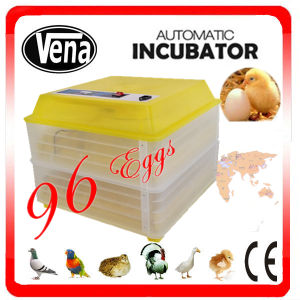 Hot Sale! Va-96 Model Automatic Baby Incubator pictures & photos