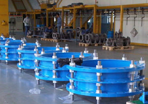 Carbon Steel Pipe Expansion Joints pictures & photos