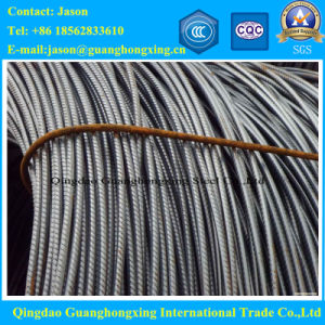 Deformed Carbon Steeel Rebar of Building Material pictures & photos