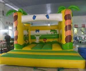 Prevalent Toy /Inflatable Castle /Inflatzble Toys pictures & photos
