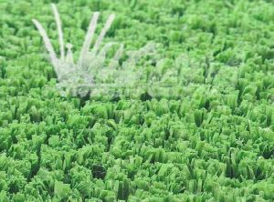 Thiolon PP Synthetic Tennis Grass (G16253)