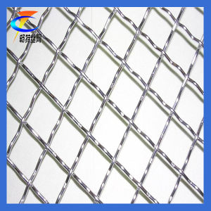 Stainless Steel Crimped Wire Mesh (CT-2) pictures & photos