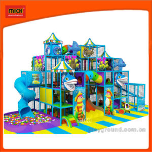Mich Ocean Theme Indoor Playground for Sale pictures & photos