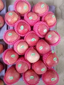 Fresh FUJI, Huaniu, Gala, Golden, Qinguan Apple pictures & photos