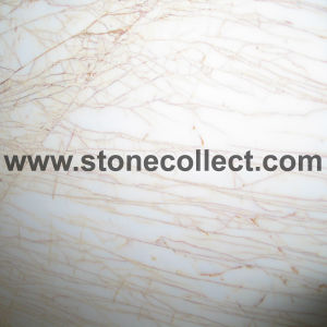 Gold Spider Marble Tiles, Slabs pictures & photos