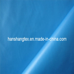 230t Polyester Taffeta (HS-C2010)