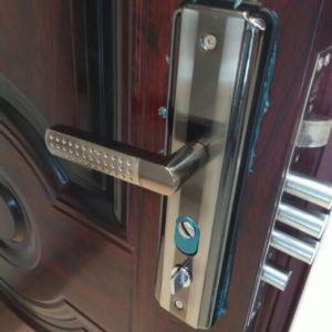Turkish Market Popular Powder Coating Metal Steel Door (SC-S156) pictures & photos