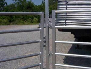 Removable Cattle Fence for Farm pictures & photos