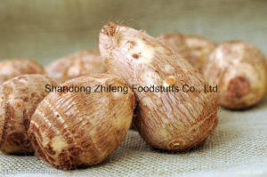 New Taro with Competitive Price From China pictures & photos