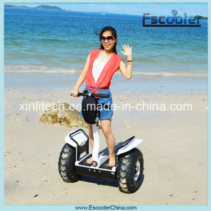 2015 Latest Model Adult Best Sell High Quality Made in China Electric E-Vehicle pictures & photos