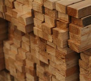 Economic Interior Painting White Wood Doors (SC-W076) pictures & photos