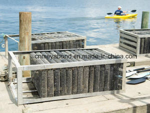 Oyster Mesh Bag Aquaculture Mesh Netting 500g (M-OB-25) pictures & photos